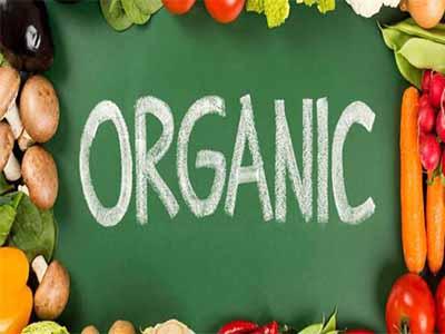 ارگانیک-سالم-طبیعی